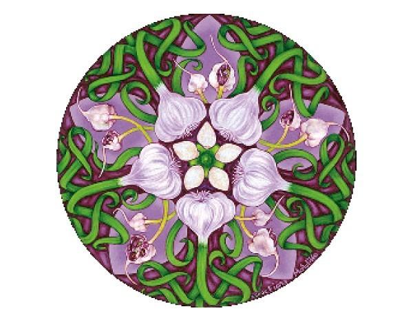 SKY325 Fiona McAuliffe Garlic Mandala Sticker