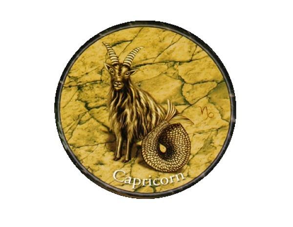 """SKY128 Starshine Arts 3"""" Capricorn Sticker"""