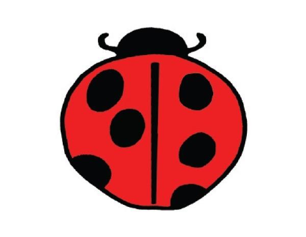 "SKY19 Root Concepts 3"" Ladybug Sticker"