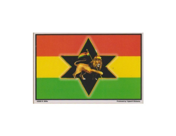 "SKY10  Net Sales ""Lion Rasta"" Sticker"