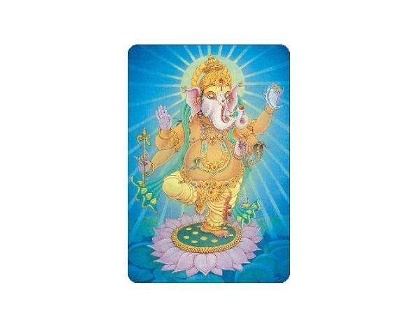 "SKY381 Pieter Weltevrede ""Ganesha"" Sticker"