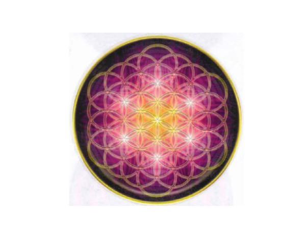 "STAR113 Zachary True Hammack ""Flower of Life"" Sticker"