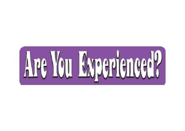 "JR51 New sKool ""Are You Experienced"" Mini Bumper Sticker"