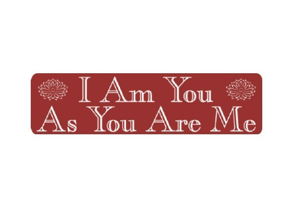 "JR114 New sKool ""I Am You, You are Me"" Mini Bumper Sticker"
