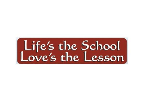 """JR118 New sKool """"Life's The School"""" Mini Bumper Sticker"""