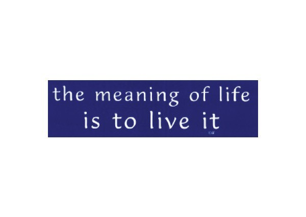 """JR143 Root Concepts """"The Meaning of Life is to Live It"""" Mini Bumper Sticker"""