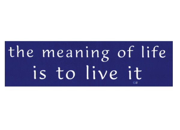 "PC47 Root Concepts ""The meaning of life is to live it"" Bumper Sticker"