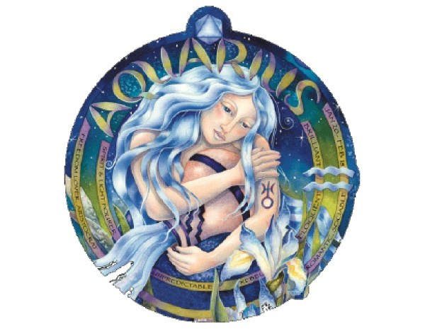 "SKY741 Bergsma Gallery ""Aquarius"" Sticker"