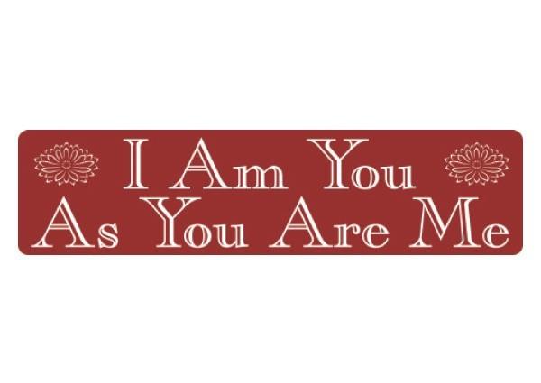 """PC108 New sKool """"I am you"""" Bumper Sticker"""